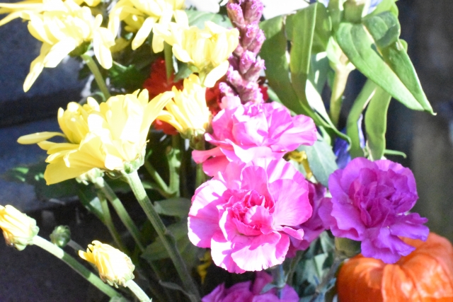お墓に花を供える
