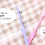 歯ブラシ交換時期top