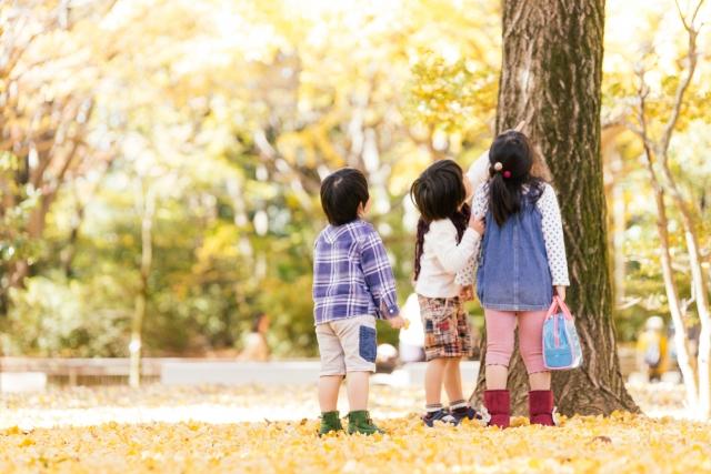 秋の公園の子どもたち