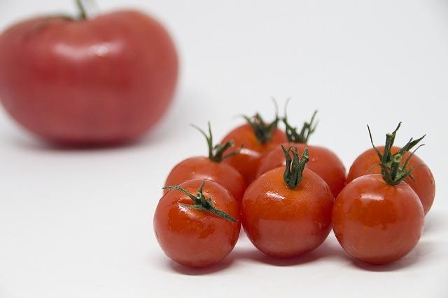 トマトは消化に良いtop