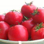 トマト保存方法top