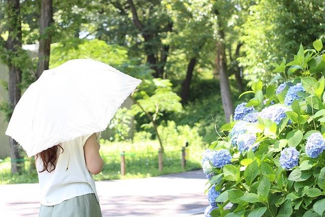 日傘の色と効果top