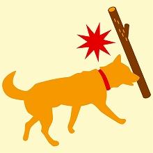 犬も歩けば棒に当たる