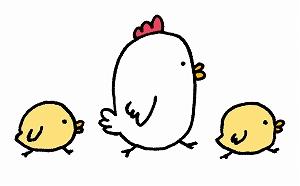 鶏群の一鶴