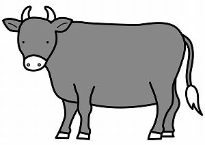 暗がりから牛