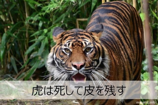 虎は死して皮を残す