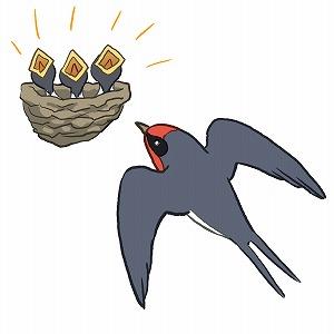 ツバメの子育て