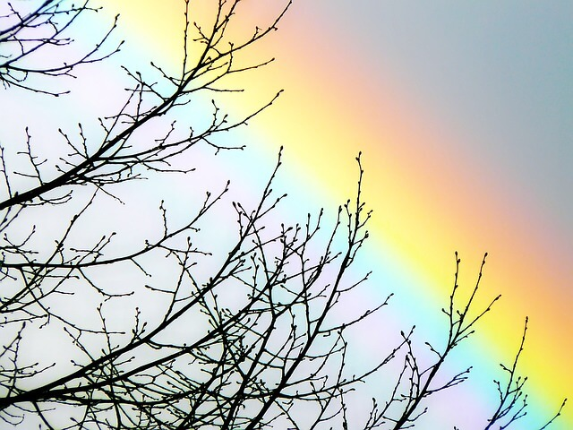虹は何色あるか