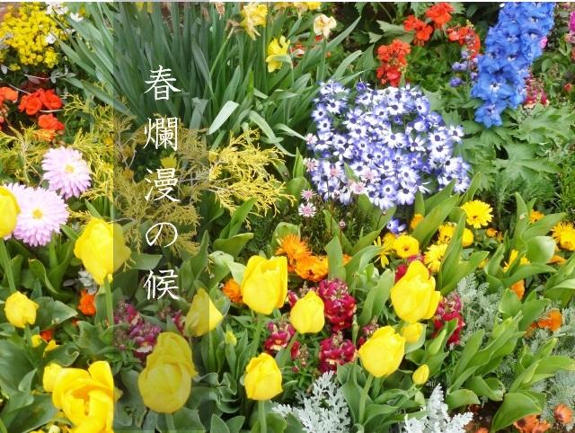春爛漫の候