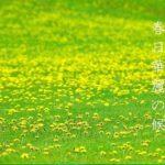 春日華麗の候